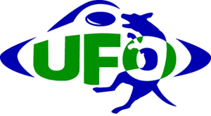 UFO World Cup